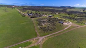 Rural / Farming commercial property for sale at 164 Dillistone Road Howatharra WA 6532
