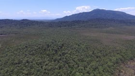 Rural / Farming commercial property sold at 0 Tully-Mission Beach Road East Feluga QLD 4854