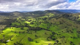 Rural / Farming commercial property for sale at 912 Blackflat Lane Wherrol Flat NSW 2429