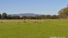 Rural / Farming commercial property for sale at 2, 5092 Midland Highway Mansfield VIC 3722