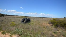 Rural / Farming commercial property for sale at Section 3 Jim Jolly Road Sandalwood SA 5309