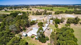 Rural / Farming commercial property for sale at 185 Venn Road Dardanup West WA 6236