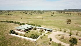 Rural / Farming commercial property for sale at 1946 Aarons Pass Road Mudgee NSW 2850