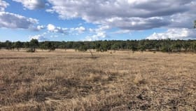 Rural / Farming commercial property for sale at 21372 Fitzroy Developmental Rd Duaringa QLD 4712
