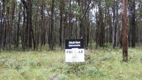 Rural / Farming commercial property for sale at Lot 7/1000 Tablelands Road Red Range NSW 2370