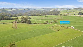 Rural / Farming commercial property for sale at 1359 Calder Road Calder TAS 7325