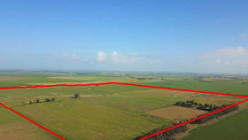 Rural / Farming commercial property for sale at 200 Padgetts Lane Wallinduc VIC 3351