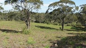 Rural / Farming commercial property for sale at 184 Old Main Road Anna Bay NSW 2316