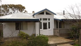 """Rural / Farming commercial property for sale at """"Pine Cottage"""" 369 Collins Rd, Numeralla Cooma NSW 2630"""