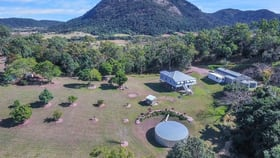 Rural / Farming commercial property for sale at 1039 Yakapari-Seaforth Road Mount Jukes QLD 4740