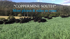 Rural / Farming commercial property for sale at 1233 Mill Creek Road Stroud NSW 2425