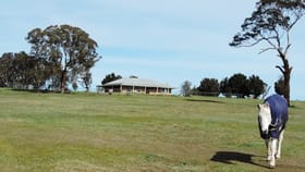 Rural / Farming commercial property for sale at 182 Henry Parkes Road Parkesbourne NSW 2580