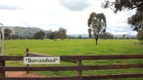 Rural / Farming commercial property for sale at 47 Millards Lane Euroa VIC 3666