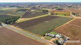 Rural / Farming commercial property for sale at 5 Bate Lane & Lots 398 And 399 Coorong  Avenue Red Cliffs VIC 3496