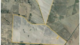 Rural / Farming commercial property for sale at 335 Chilmans Road Port Neill SA 5604