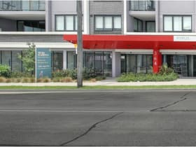 Showrooms / Bulky Goods commercial property for lease at 364 Canterbury Road Canterbury NSW 2193
