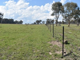 "Rural / Farming commercial property for sale at ""Munbulla"" Junction Road New Valley NSW 2365"