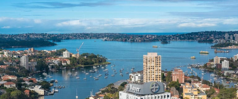 Offices commercial property for lease at 141 Walker Street North Sydney NSW 2060