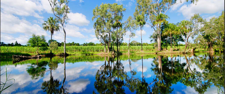 Development / Land commercial property for sale at 207 Pilchowski Road Giru QLD 4809