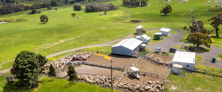 Rural / Farming commercial property for sale at 83 Scrubby Camp Lane Baynton East VIC 3444