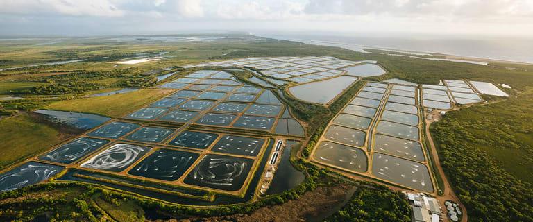 Rural / Farming commercial property for sale at Alva QLD 4807