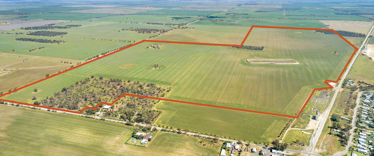 Rural / Farming commercial property for sale at Woorinen South VIC 3588