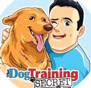 The Dog Training Secret Crunchbase Company Profile Funding
