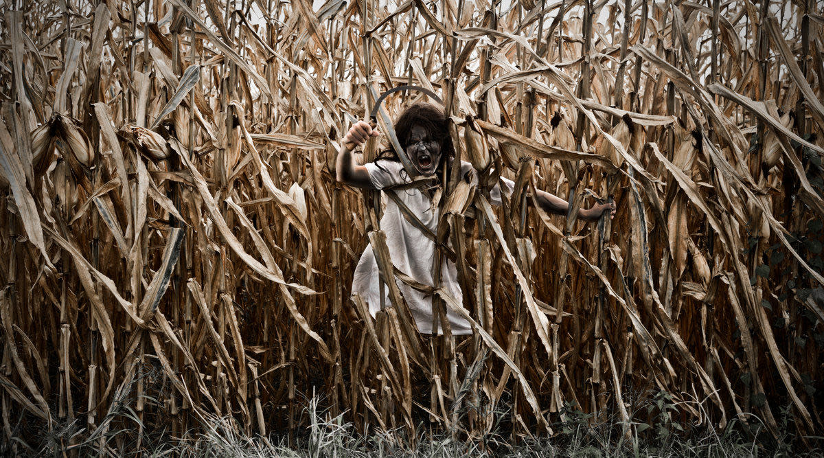 Indianapolis Haunted House Reviews