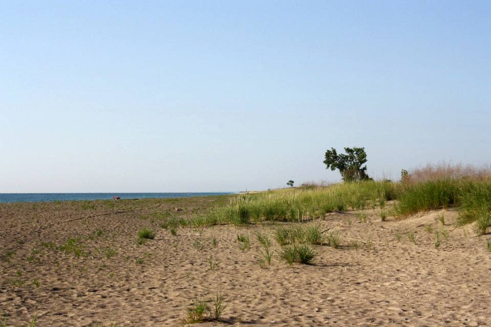 Where To Go Camping Near Chicago