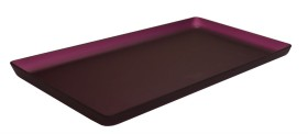Lasikkotarjotin luumunpunainen matta 21x40 cm