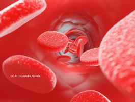 Blutspende  c aldecastudio fotoliakd4ltn