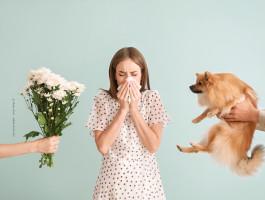2021 05 05 allergien immunsystem ausser rand und bandimuxfv