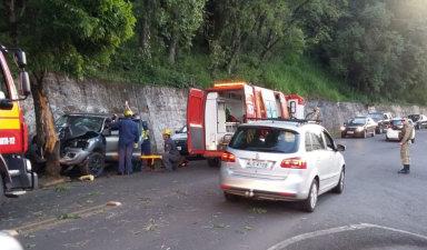 Caminhonete bate violentamente contra árvore em Joaçaba