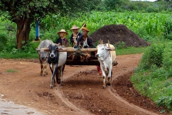 Tribal beliefs of the Lu'ha Tribes on the Road to Mandalay in Myanmar