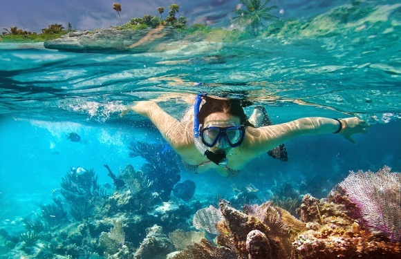 Go snorkeling to discover an amazing underwater world