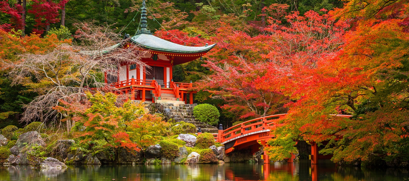 Just Japan - An Introduction | Tours & Trips with ENCHANTING