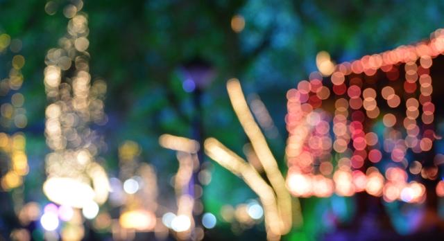 Diwali lights during India Tour