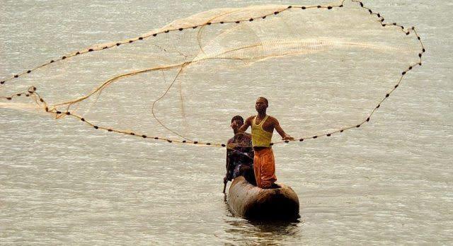 Fishermen In Malawi Catching fresh fish