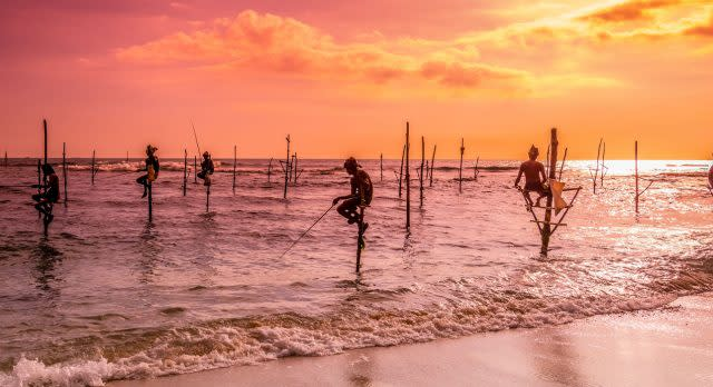 Ikonische Stelzenfischer auf Sri Lanka