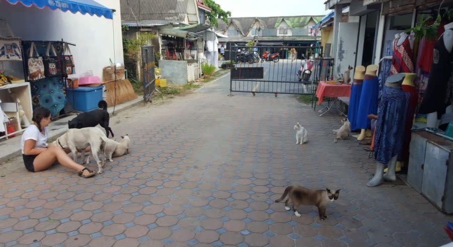 Straßen von Thailand