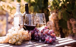 Enchanting Travels Italy Tours glasses of red and white wine and ripe grapes on table in vineyard at sun day