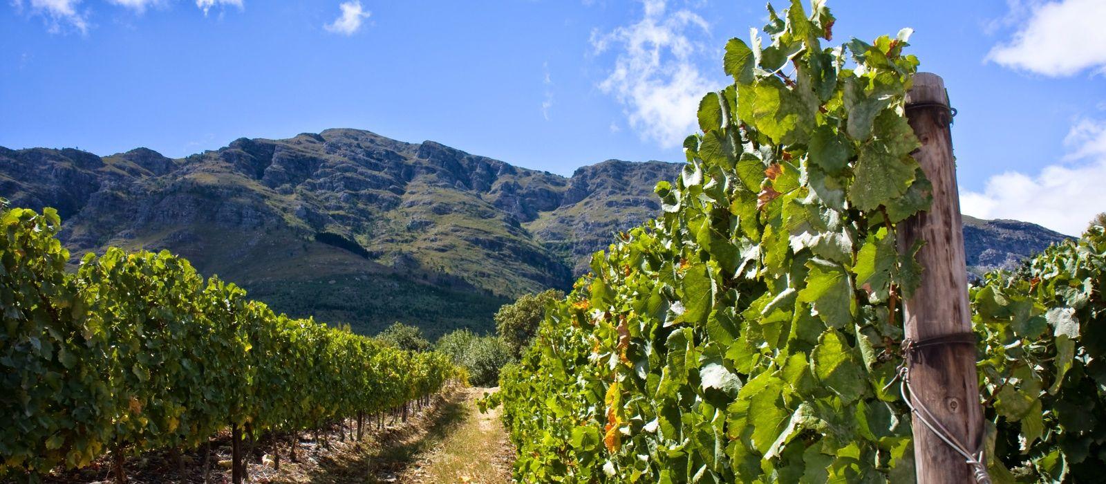 Destination Stellenbosch South Africa
