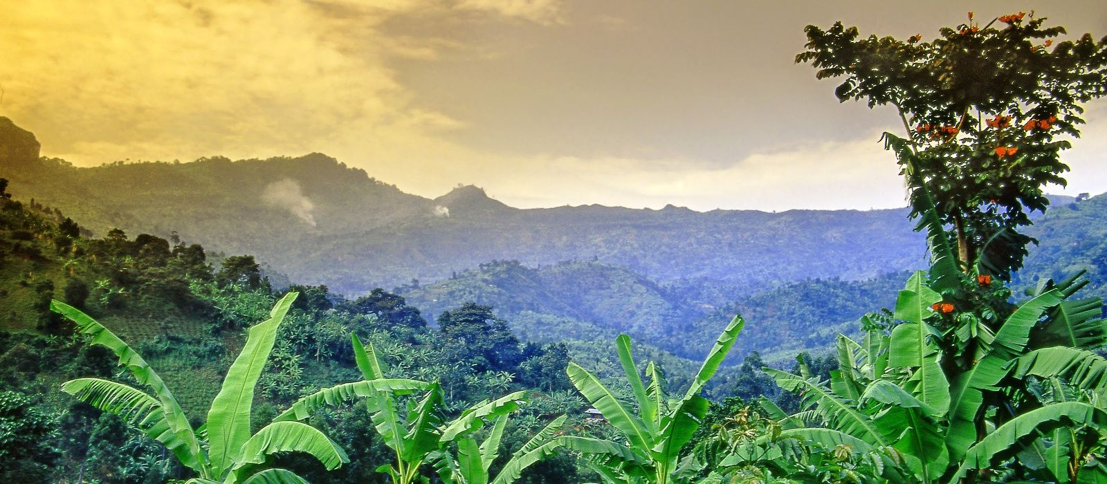 Destination Mt Elgon -Trekking Uganda