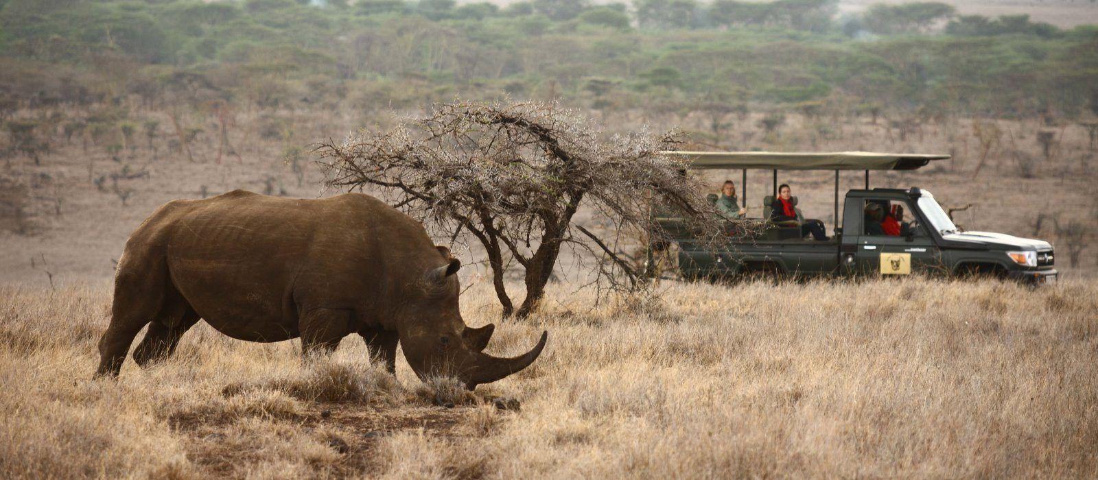 Wildes Kenia – Luxus Safari Reise Urlaub 5