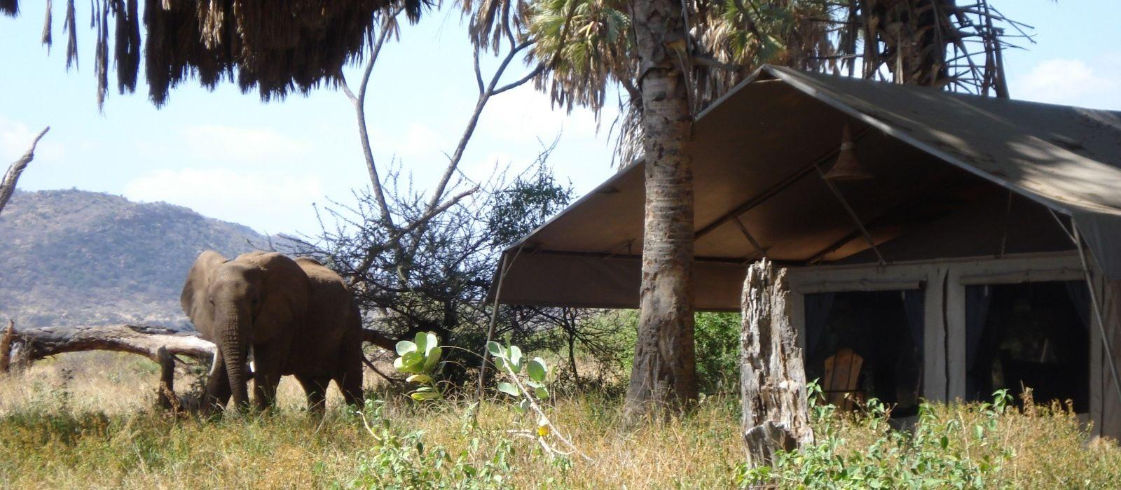 Elephant Bedroom Camp Hotel In Kenya