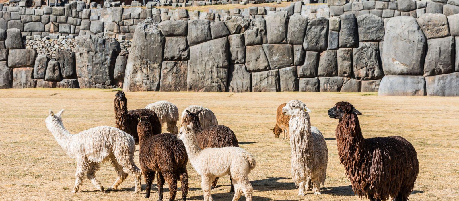 Mountains, Inca Trail & Lakeside Leisure Tour Trip 2