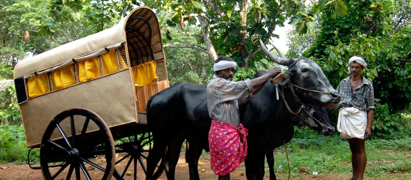Destination Kanam South India