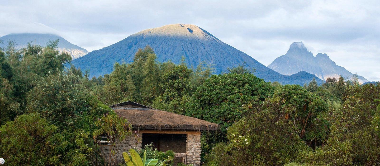 Kenia und Ruanda: Safari und Gorilla-Trekking Urlaub 4