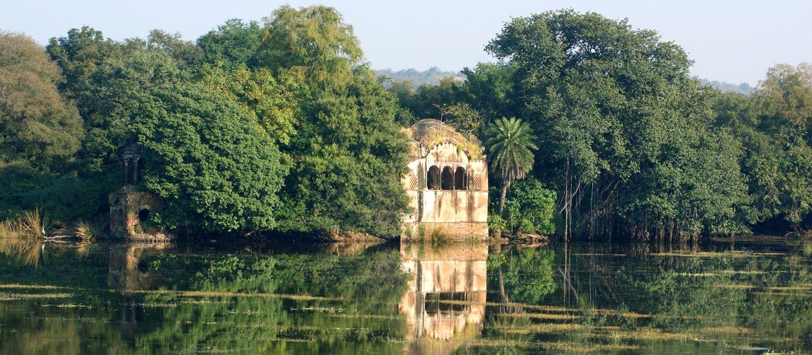Nordindien Rundreise: Städte, Tempel & Safaris Urlaub 2