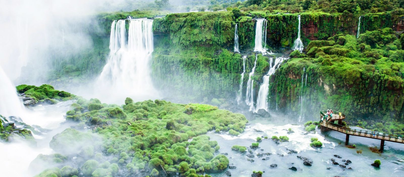 Brazil's Wildlife & Natural Wonders Tour Trip 1